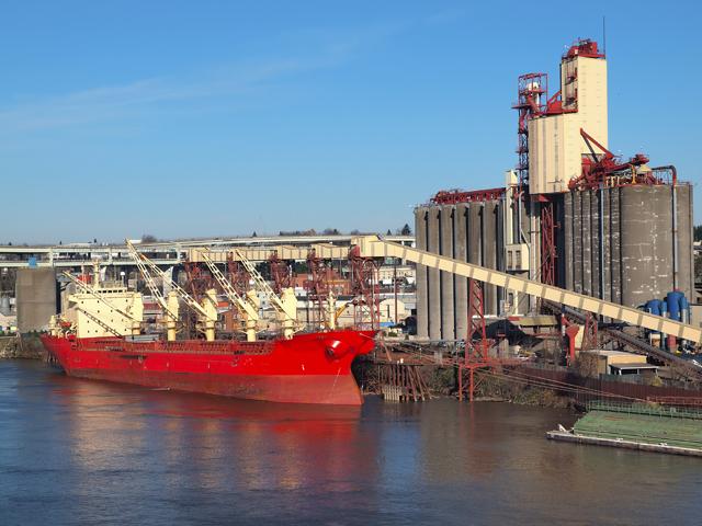 Credibilitatea Ucrainei pe piaţa internaţională a cerealelor se clatină sub atacurile Moscovei