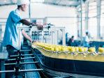 Producătorul sucurilor Tymbark: Şcoala românească trebuie să-şi adapteze specializările la cerinţele din piaţa muncii