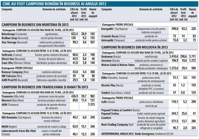 Cine au fost campionii rom�ni �n business, �n anul 2013