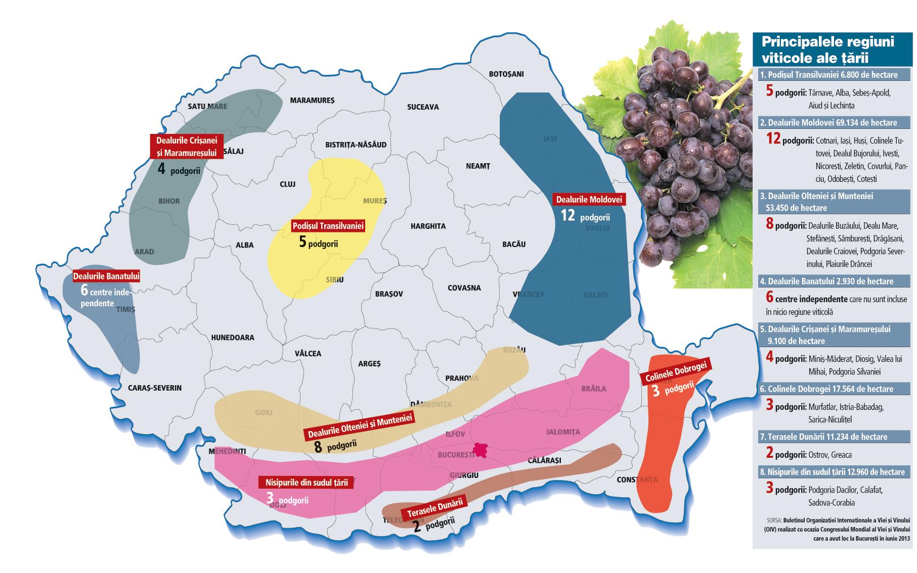Harta Vinului Romanesc Cu Opt Regiuni Viticole 37 De Podgorii Si