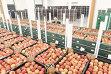 Ce produse agroalimentare importă şi exportă România