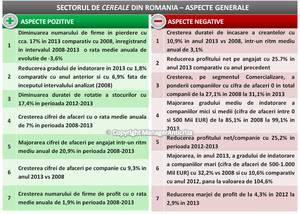Afacerile producătorilor şi distribuitorilor de cereale au crescut cu 7% pe an între 2008 şi 2013