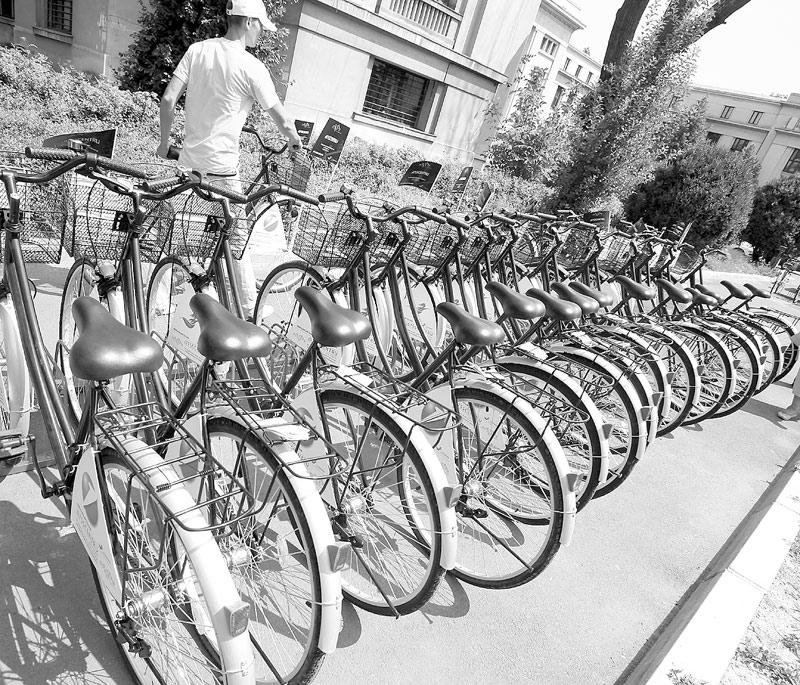 calitate superioară produs nou coduri promoționale Şeful celui mai mare producător de biciclete a plecat director de ...