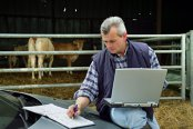 Criza fermierilor: în Germania, bălegarul a ajuns mai valoros decât laptele