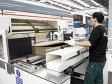 Afacerile cu ambalaje ale belgienilor de la VPK Packaging au crescut cu 26% în primul semestru