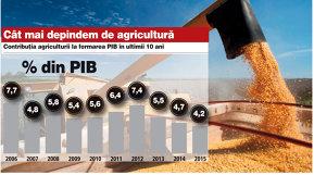 """Agricultura în jocul economiei. Cât şi cum influenţează anul agricol bun structura PIB şi creşterea economică. """"Este cel mai bun an agricol de când am intrat în România."""""""