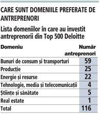 Lista domeniilor în care au investit antreprenorii din Top 500 Deloitte