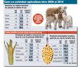 Cu 7,6 miliarde de euro din fonduri europene, valoarea producţiei agricole a crescut cu 35% în 10 ani