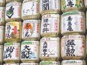 Autorităţile de la Bruxelles sunt mai aproape de încheierea unui acord de comerţ liber cu Japonia