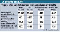 Valoarea totală a producţiei agricole şi valoarea adăugată brută în 2016