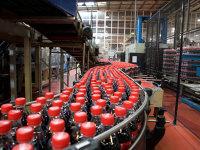 Vânzările Coca-Cola HBC România, la un nou nivel record după un avans al volumelor de 9% în 2016