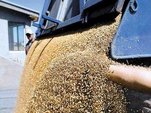 Traderul elveţian Ameropa a preluat o bază de depozitare pentru cereale în  judeţul Ialomiţa