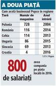 Grafic: Cum arată businessul Pepco în regiune