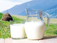 Cum s-a schimbat piaţa lactatelor în ultimul deceniu: trei dintre primii zece jucători şi-au mărit de cel puţin patru ori businessul