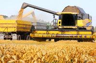 Producţia mondială de grâu se apropie de un nivel record