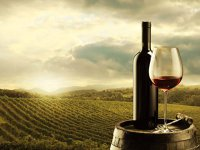 Ungurii prind gustul vinurilor de calitate