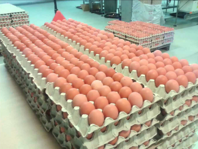 """Ministrul Agriculturii, Petre Daea: """"Să iei oul cu 50 de bani şi să-l pui pe raft pentru consumator la peste 1 leu este mult prea mult. Aşteptăm răspunsul Consiliului Concurenţei"""""""
