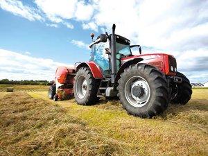 Top 20 companii din agricultură şi silvicultură