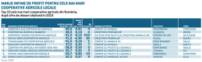 Top 10 cele mai mari cooperative agricole din România. Liderul clasamentului, cooperativa Dobrogea Sud, a vândut cereale de 18 mil. euro în 2016