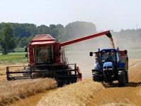 Exporturile de grâu ale Rusiei sunt mai mari decât cele realizate de orice altă ţară în ultimii 25 de ani