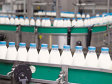 """Agroindustriala Pantelimon ia fonduri europene de 400.000 de euro pentru dezvoltarea fabricii de lapte şi a fermei de vaci. """"Sunt operaţiuni care încă se fac manual şi pe care vrem să le mecanizăm complet."""""""