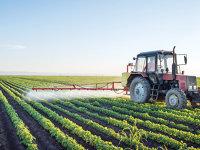 Subvenţii de circa 94 milioane de lei pentru agricultură