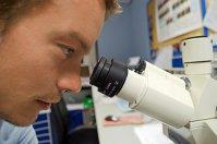 Revoluţia medicinei: Un experiment din SUA a reuşit să modifice genetic un embrion uman pentru a corecta problemele cardiace
