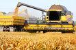 Guvernul relaxează condiţiile de eligibilitate pentru plăţile directe în agricultură