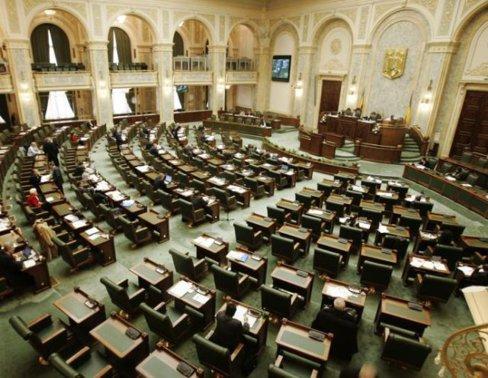 Senatorul USR, Florina Presadă: Ministerul Muncii loveşte în cei vulnerabili pentru a acoperi deficitul bugetar