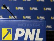 PNL: PSD să nu vândă România, bucată cu bucată, pentru voturile UDMR