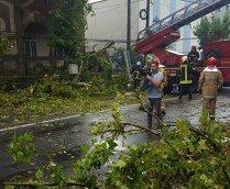 Maramureş: Zeci de apeluri la 112 după ce furtuna a doborât mai mulţi  copaci