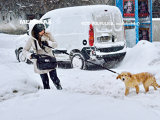 Prima NINSOARE! În România a început să NINGĂ. Stratul de zăpadă măsoară...