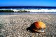 Vreme extrem de caldă: Minivacanţa de 1 Mai aduce temperaturi cu până la 10 grade mai mari faţă de cele normale. Se anunţă temperaturi de până la 29 de grade