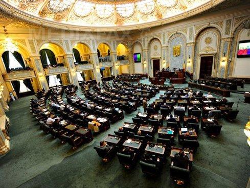 Într-o singură sesiune, parlamentarii au instituit o sărbătoare şi 3 zile naţionale şi Ziua Olteniei