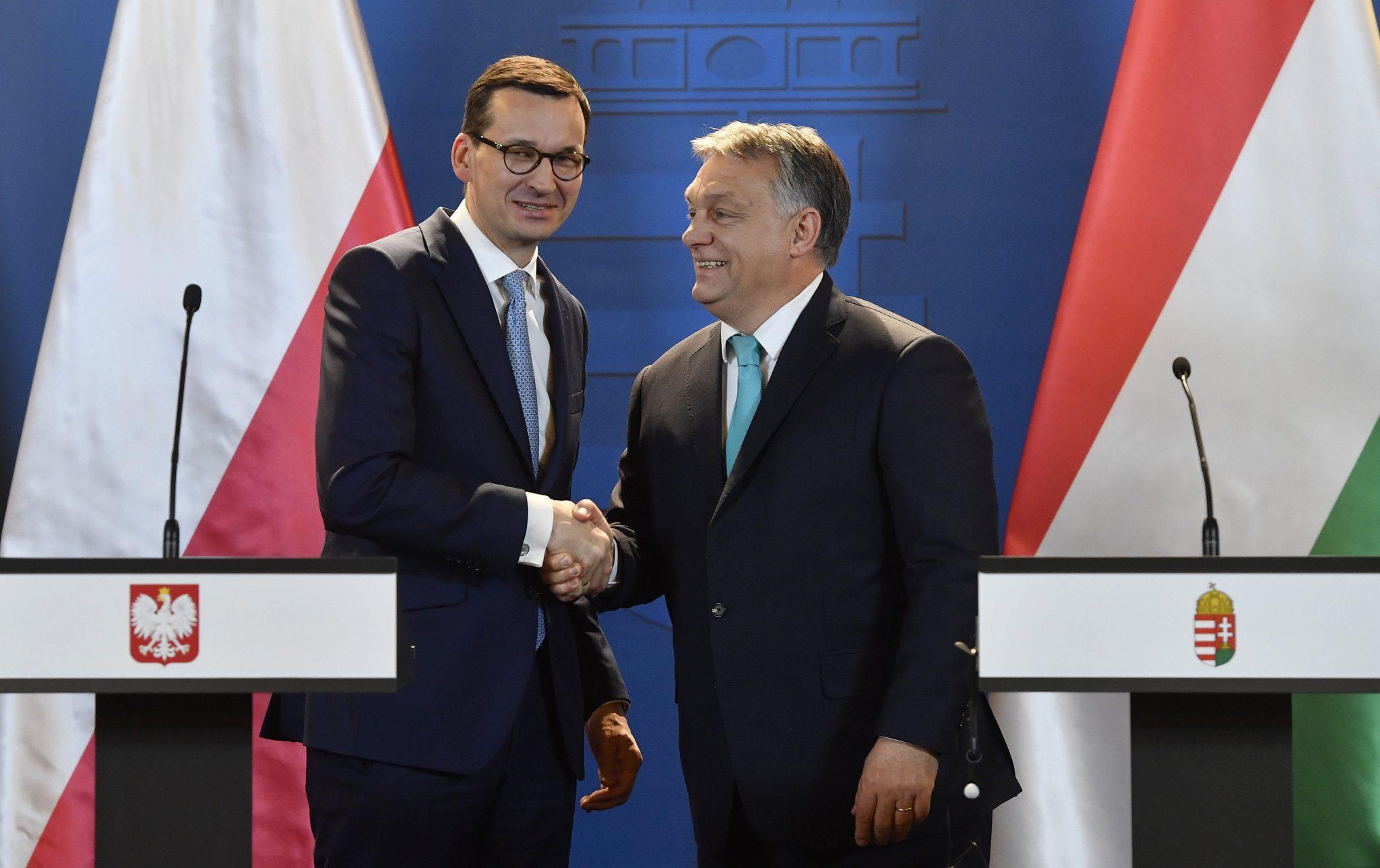 """""""Copiii rebeli"""" ai Uniunii Europene au bătut palma: Polonia şi Ungaria vor să facă o Bancă Centrală de Dezvoltare, care să investească în infrastructura din regiune"""