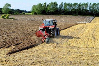 Gothaer a plătit agricultorilor daune de 13,3 mil. lei în 2017, cele mai afectate judeţe fiind Arad, Teleorman şi Constanţa