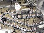 Producătorul de lactate Prodlacta rămâne pe bursă