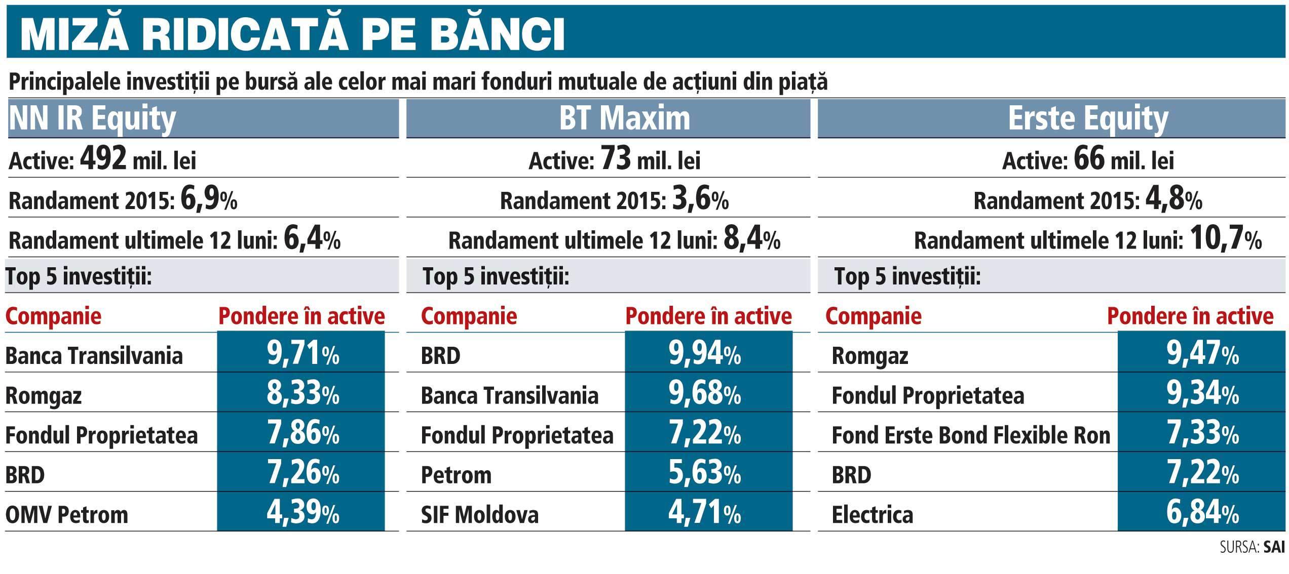 """Ce investiţii bursiere au """"sub capotă"""" cele mai mari fonduri de acţiuni"""
