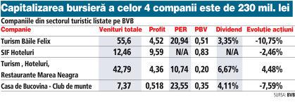 Companiile din sectorul turistic listate pe BVB