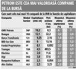 Grafic: Care sunt cele mai mari 10 companii de la BVB în funcţie de capitalizare