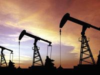 Preţul barilului de petrol, plus 1,7% luni, dar acţiunile Petrom închid pe minus