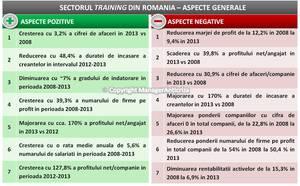 Reducerea bugetelor companiilor a afectat direct profitul firmelor de training în 2008-2013
