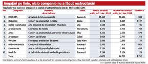 Topul celor mai mari angajatori cu capital privat românesc în 2016. Primii zece au angajat 5.000 de oameni