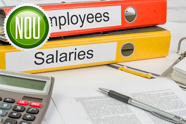 Revoluţia fiscală. Guvernul îi obligă pe angajatorii privaţi să nu diminueze salariile nete prin trecerea contribuţiilor de la angajator la angajat