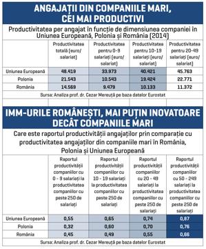 Un angajat dintr-o companie mare din România are o productivitate de peste 20.000 de euro pe an, dublă faţă de cea a unuia dintr-un IMM