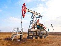 Scandalul redevenţelor. Gigi Dragomir, numit din nou preşedinte al Agenţiei pentru Resurse Minerale