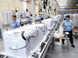 Producţia de electrocasnice câştigă teren la export: top 3 fabrici se apropie de 600 mil. euro