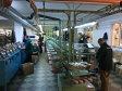 O familie din Suceava face afaceri de 58 mil. lei din încălţăminte şi curele din piele