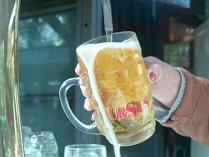 Ursus: Consumul de bere nu mai poate creşte atât timp cât populaţia şi natalitatea scad