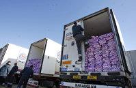 Dramatic. Importăm usturoi de 14,5 mil. euro, iar jumătate vine din Olanda